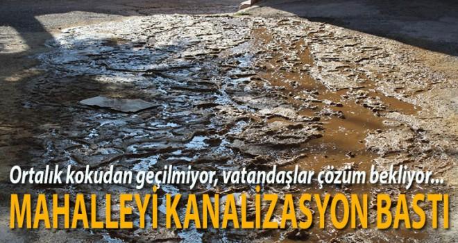 Kanalizasyon sokaklara taştı