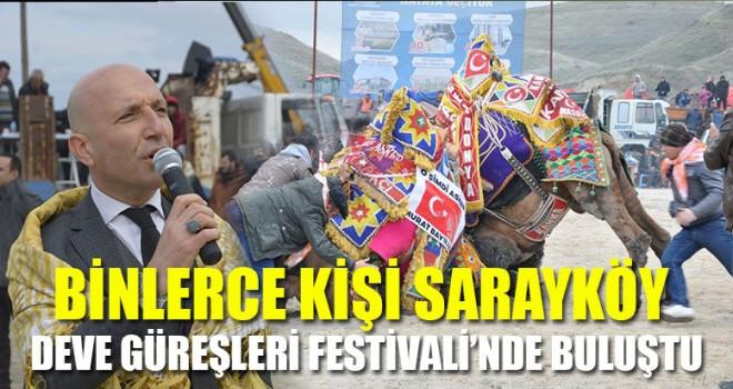 Binlerce Kişi Sarayköy Deve Güreşleri Festivali'nde Buluştu