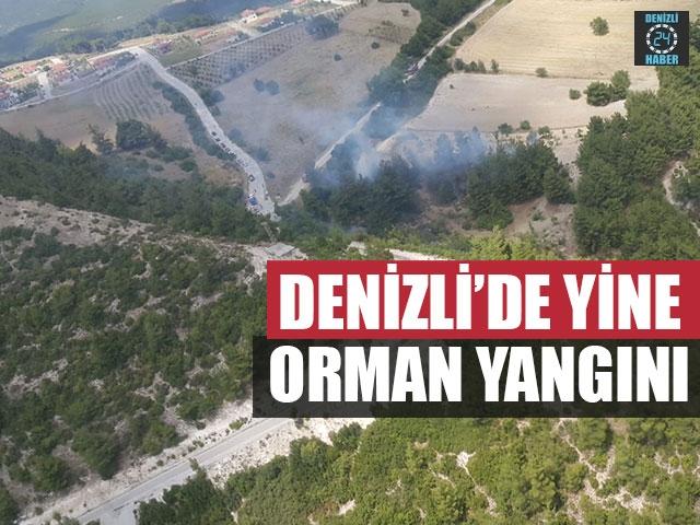 Denizli'de Yine Orman Yangını