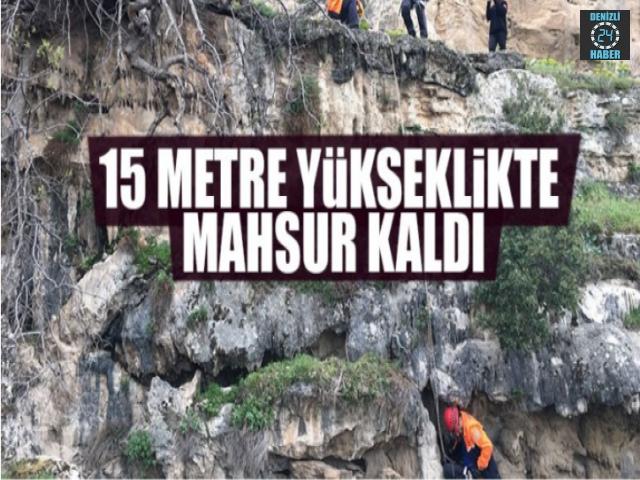 15 Metre Yükseklikte Mahsur Kaldı
