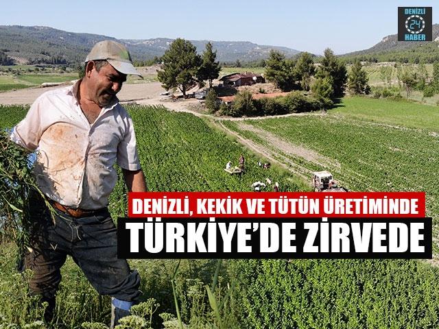 Denizli, Kekik Ve Tütün Üretiminde Türkiye'de Zirvede
