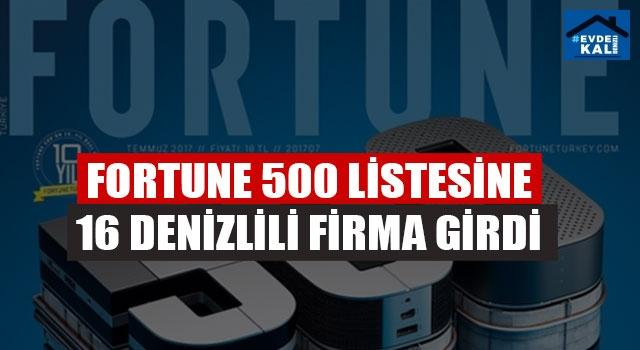Fortune 500 Listesine 16 Denizlili Firma Girdi