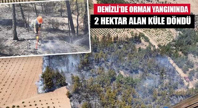 Denizli'de orman yangınında 2 hektar alan küle döndü