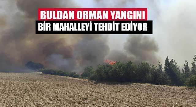 Buldan orman yangını bir mahalleyi tehdit ediyor
