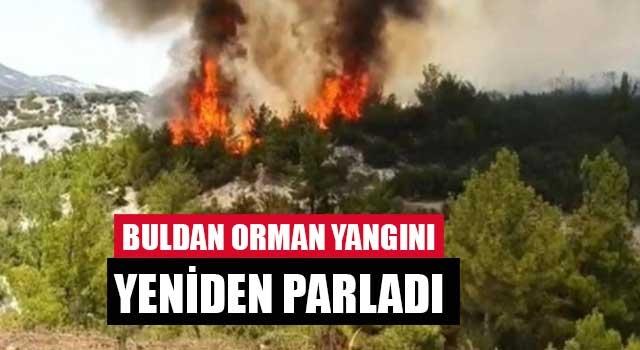 Buldan orman yangını yeniden parladı