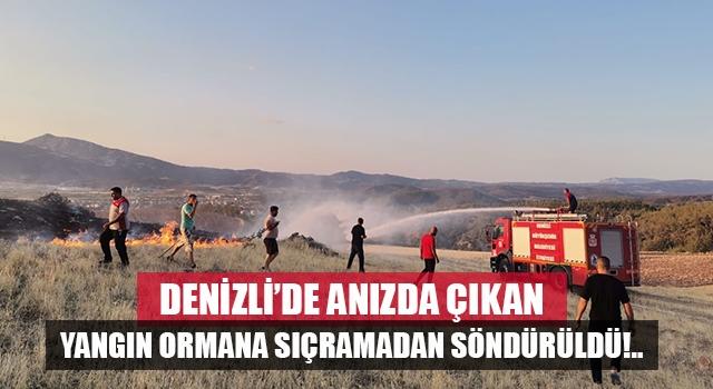 Denizli'de anız yangını ormana sıçramadan söndürüldü