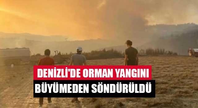 Denizli'de orman yangını büyümeden söndürüldü