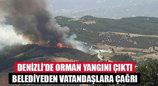 Buldan'da büyük orman yangını