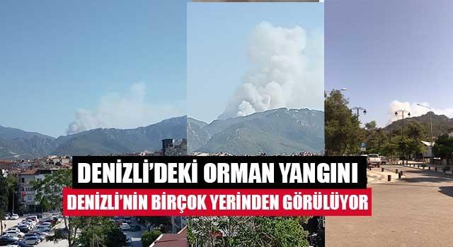 Denizli'deki orman yangını Denizli'nin birçok yerinden görülüyor