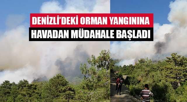 Denizli'deki orman yangınına havadan müdahale başladı