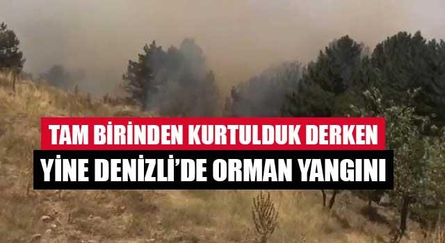 Tam birinden kurtulduk derken yine Denizli'de orman yangını
