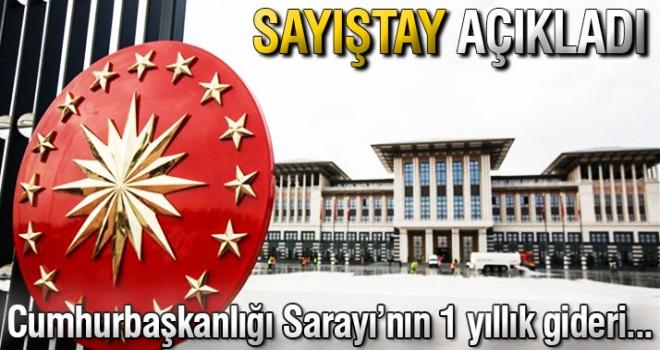 Sayıştay, Cumhurbaşkanlığı Sarayı'nın 1 senelik giderini açıkladı