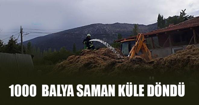 1000 Balya Saman Küle Döndü