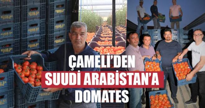 Çameli'den Suudi Arabistan'a Domates