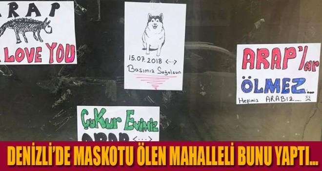 Denizli'de maskotu ölen mahalleli bunu yaptı