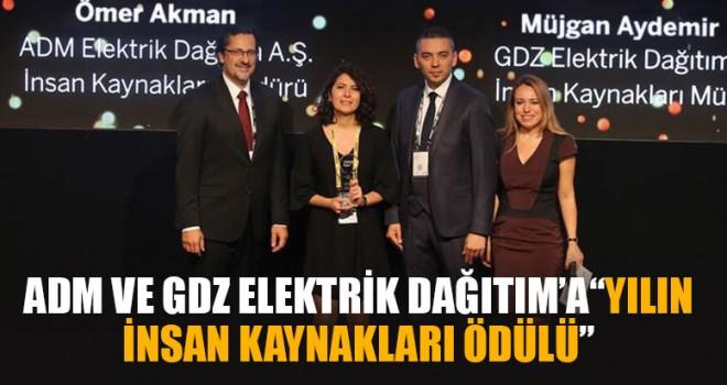 """ADM ve GDZ Elektrik Dağıtım'a""""Yılın İnsan Kaynakları Ödülü"""""""