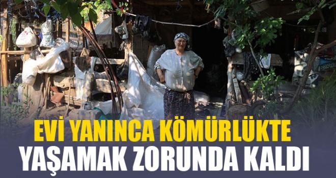 Acıpayam'da Evi yanan Fatma Dağ kömürlükte yaşıyor