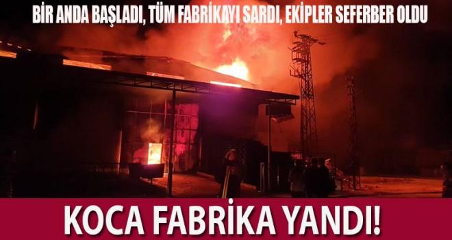 Plastik kasa fabrikasında büyük yangın