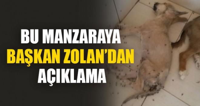 Bu Manzaraya Başkan Zolan'dan Açıklama