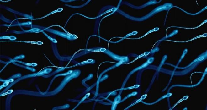 Sperm Sayısı Kaç Olmalı?