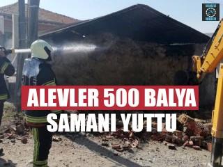 Alevler 500 Balya Samanı Yuttu