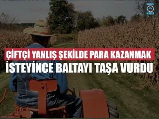 Çiftçi Yanlış Şekilde Para Kazanmak İsteyince Baltayı Taşa Vurdu