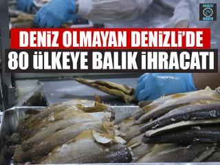 Deniz Olmayan Denizli'de 80 Ülkeye Balık İhracatı