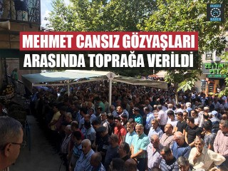 Mehmet Cansız Gözyaşları Arasında Toprağa Verildi