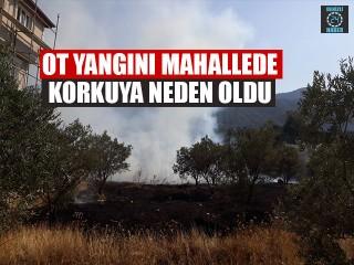 Ot Yangını Mahallede Korkuya Neden Oldu