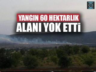 Yangın 60 Hektarlık Alanı Yok Etti