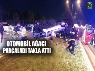 Otomobil Ağacı Parçaladı Takla Attı