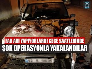 Far Avı Yapıyorlardı Gece Saatlerinde Şok Operasyonla Yakalandılar