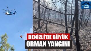 Denizli'de Büyük Orman Yangını