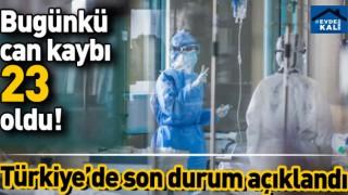 Türkiye'de son 24 saatte 23 can kaybı