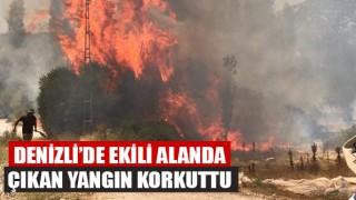 Denizli'de Ekili Alanda Yangın Çıktı