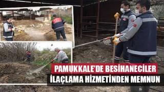 Pamukkale'de Besihaneciler İlaçlama Hizmetinden Memnun