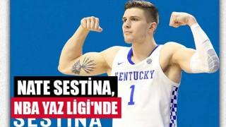 Nate Sestina, NBA Yaz Ligi'nde
