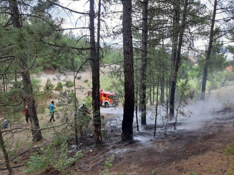 acıpayam orman yangnı